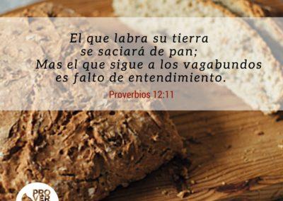 Proverbios_12_11