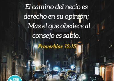 Proverbios_12_15