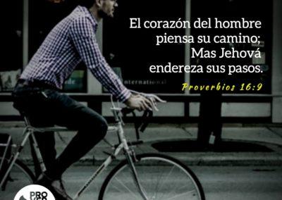 Proverbios_16_9