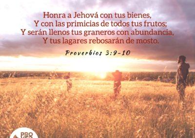 Proverbios_3_9-10