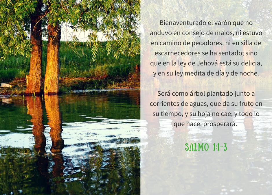 Imagen: Salmo 1:1-3